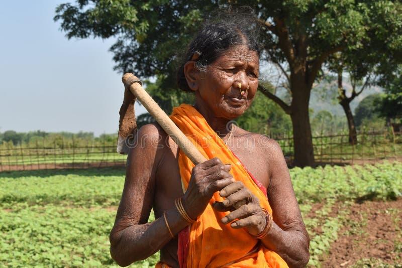 ODISHA,印度,农夫10月2018年,有耕犁的农村妇女 免版税库存图片