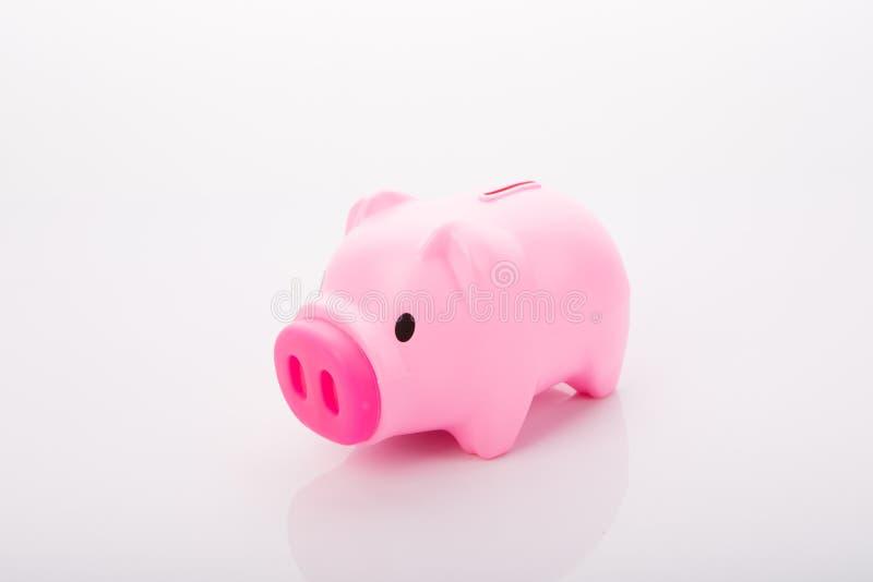 Odizolowywający pieniądze różowy świniowaty pudełko obraz stock