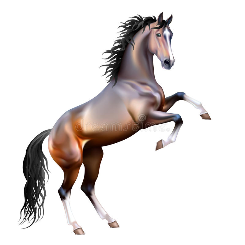 Odizolowywający wektorowy realistyczny podpalany koń ilustracja wektor