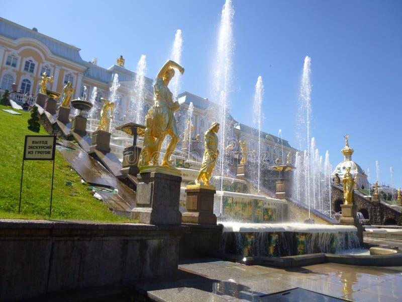 odla springbrunnar som stora historiemuseer ett parkerar peterhofryss royaltyfria bilder