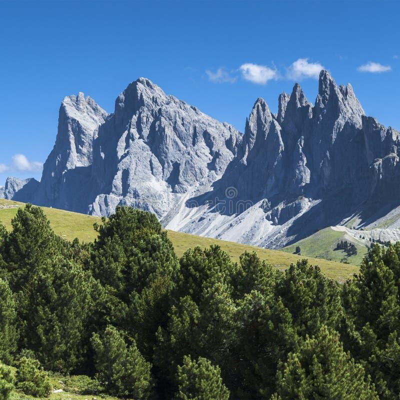 Odle, dolomity - Włochy fotografia stock