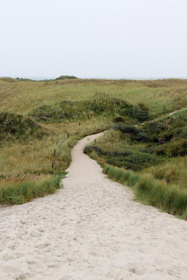 Odległy widok na piaskowatej nożnej ścieżce pod niebieskim niebem na północnym dennym wyspy juist Germany zdjęcia stock