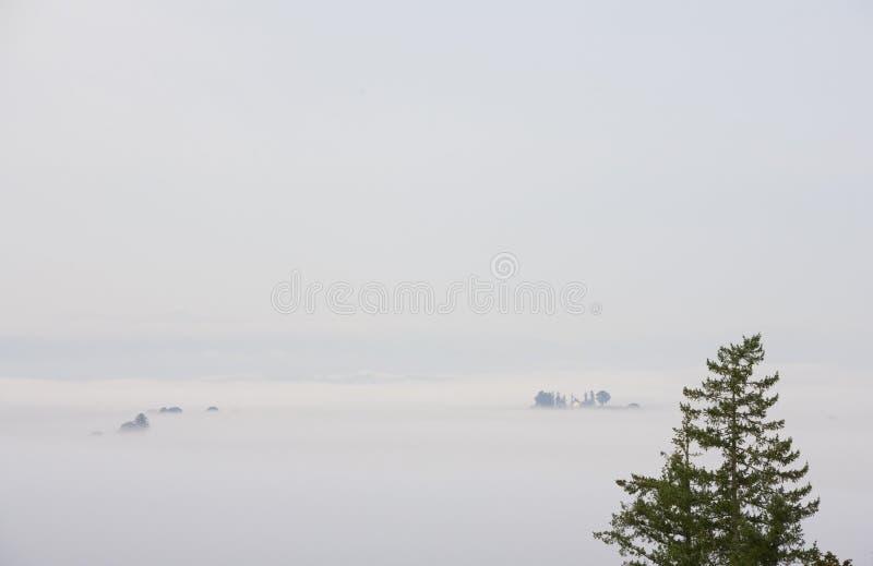 odlegli dom wiejski mgły drzewa dolinni fotografia stock
