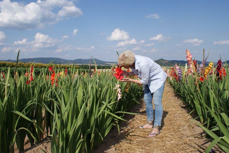 Odlingen av öppna fältblommor inspirerar också denna unga kvinna royaltyfria foton