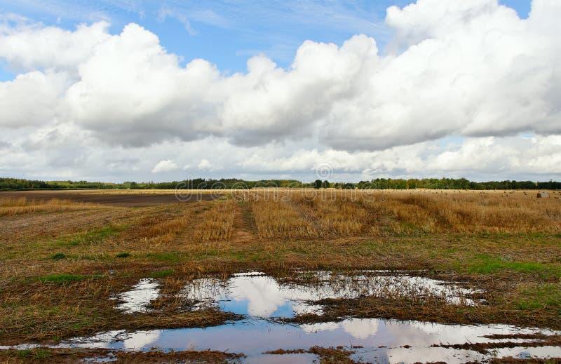 Odlingsmark. arkivfoto