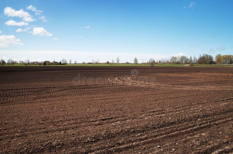 Odlingsmark i en vår royaltyfri bild