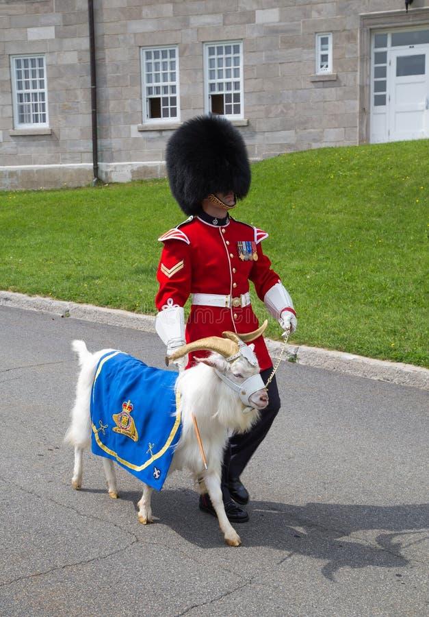 Odmienianie strażnik, Quebec miasto zdjęcia royalty free