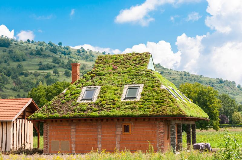 Green ecological rooftop on residentual house, blue sky white clouds. royalty free stock image