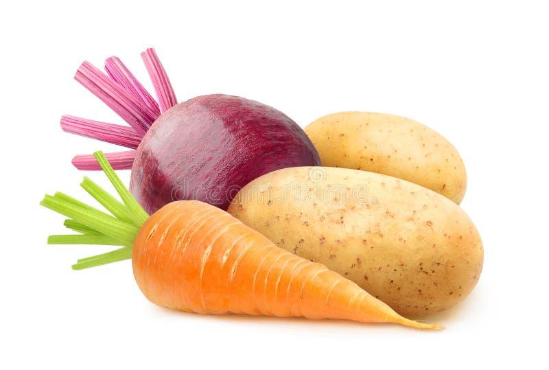 Odosobneni korzeniowi warzywa fotografia stock