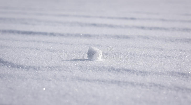 Odosobniona Śnieżna kępa obrazy royalty free