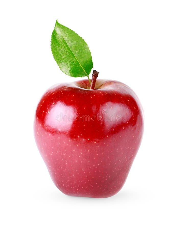 odosobniona jabłko czerwień zdjęcia royalty free