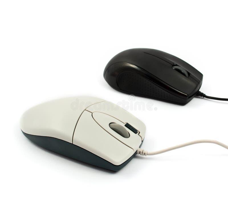 odosobniona komputer mysz zdjęcia royalty free