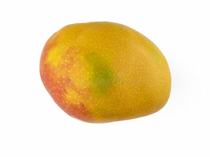Odosobniona owoc dojrzały mango ściągła forma kolor żółty, menchie i wapno cienie, obrazy stock
