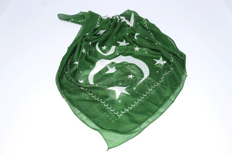 Odosobniona pakistańczyk flaga macha 3d Realistyczną tkaninę obraz stock