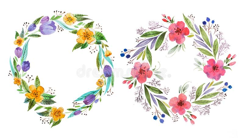 Odosobniona ręka malujący akwareli kwiecisty coronet robić delikatni kwiaty i ulistnienie ilustracji