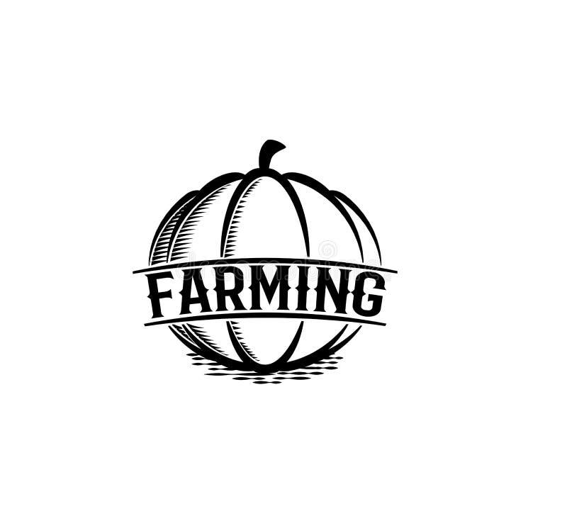 Odosobniony abstrakcjonistyczny czarny koloru round kształta dyniowy logo na białym tle, uprawia ziemię logotyp, jesieni warzywa  royalty ilustracja