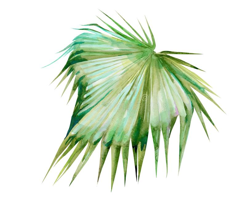 Odosobniony akwareli zielonej rośliny liścia deocration ilustracji