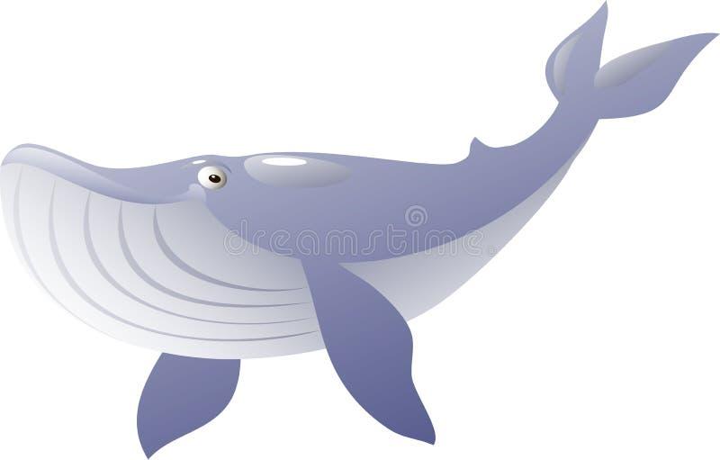 Odosobniony błękitny wieloryb również zwrócić corel ilustracji wektora ilustracja wektor