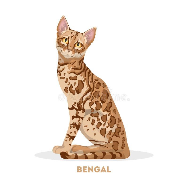 Odosobniony Bengal kot royalty ilustracja