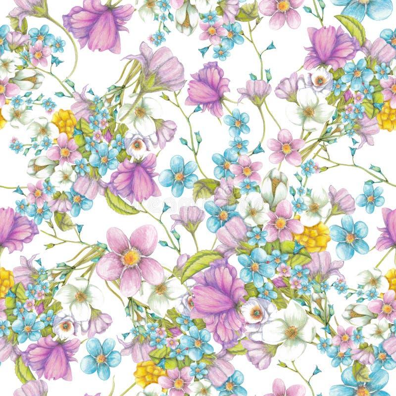 Odosobniony bezszwowy wzór wildflowers na białym tle ilustracja wektor