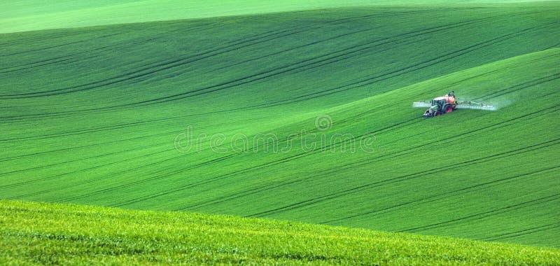 Odosobniony ciągnik w zielonych polach fotografia stock