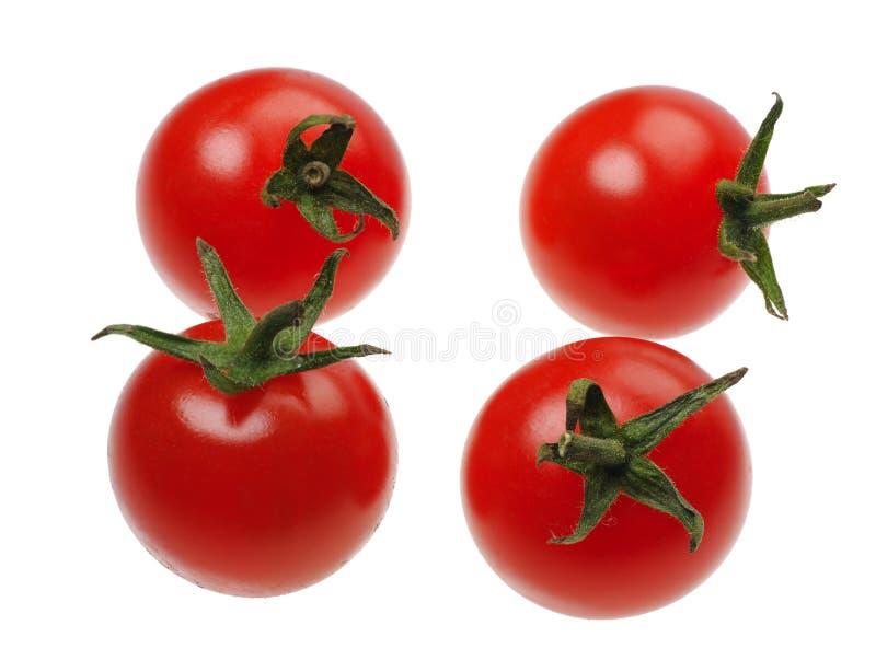 odosobniony czerwony tomatto obrazy royalty free