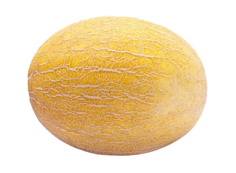 odosobniony melonowy kolor żółty zdjęcie stock
