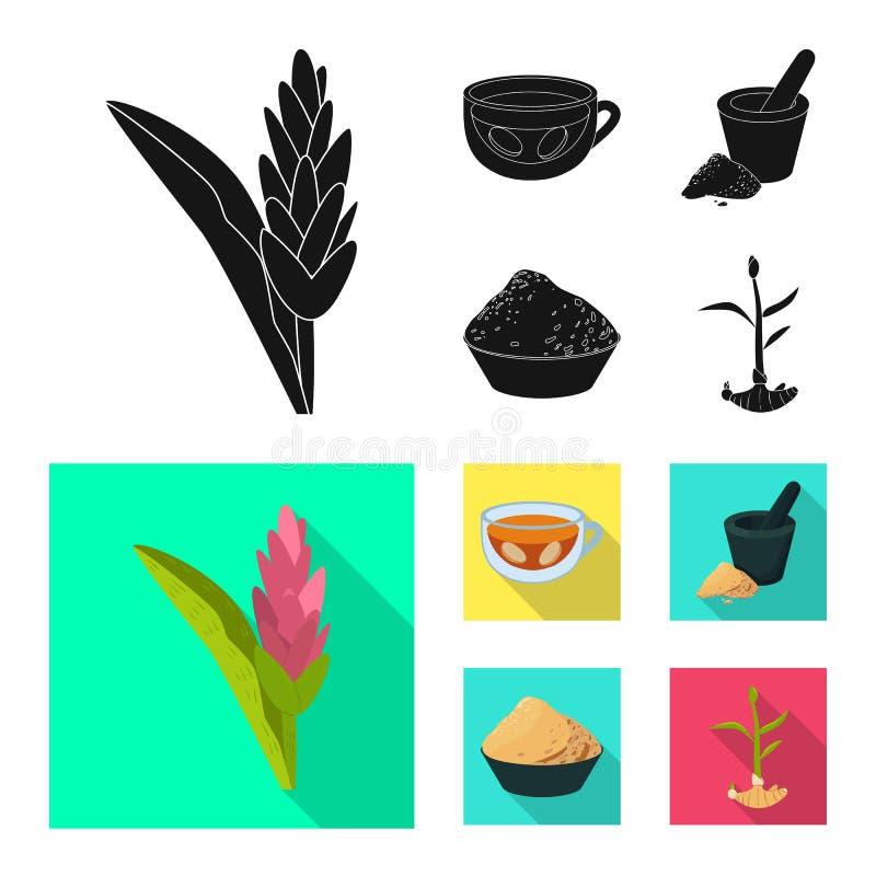 Odosobniony przedmiot świeży i produkt symbol Kolekcja świeży i azjatykci akcyjny symbol dla sieci ilustracja wektor