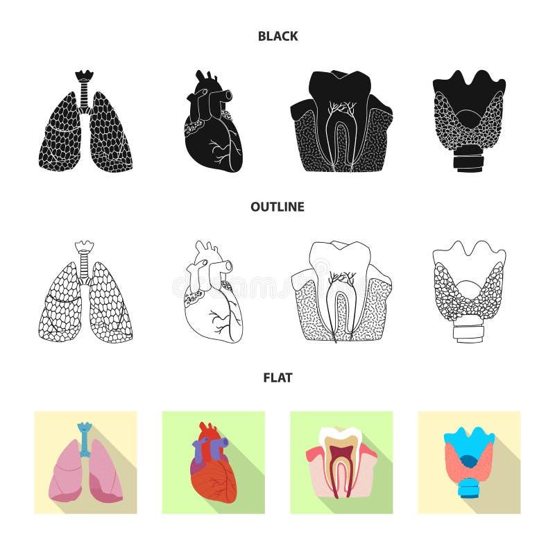 Odosobniony przedmiot ciała i istoty ludzkiej logo Set ciało i medyczny akcyjny symbol dla sieci ilustracja wektor
