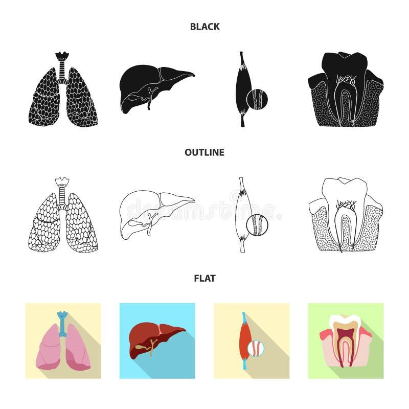 Odosobniony przedmiot ciała i istoty ludzkiej logo Set ciało i medyczny akcyjny symbol dla sieci royalty ilustracja