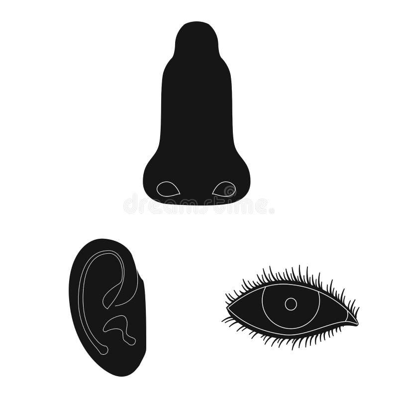 Odosobniony przedmiot istoty ludzkiej i części ikona Kolekcja istoty ludzkiej i kobiety wektorowa ikona dla zapasu ilustracja wektor