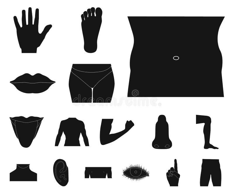 Odosobniony przedmiot istoty ludzkiej i części znak Set istoty ludzkiej i kobiety wektorowa ikona dla zapasu royalty ilustracja