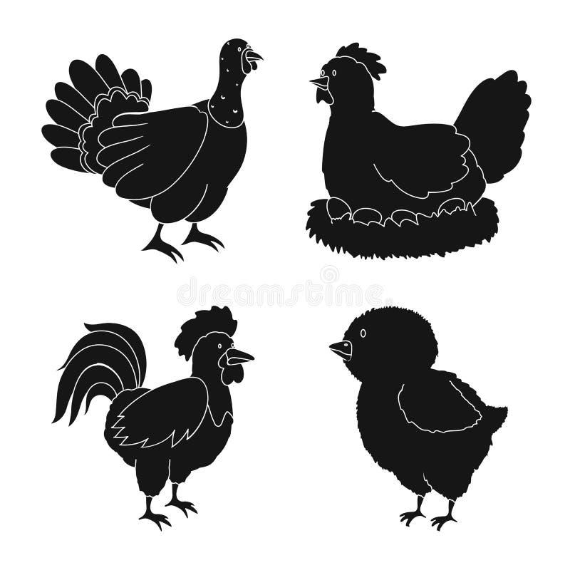 Odosobniony przedmiot rancho i organicznie logo Set rancho i jedzenia wektorowa ikona dla zapasu royalty ilustracja