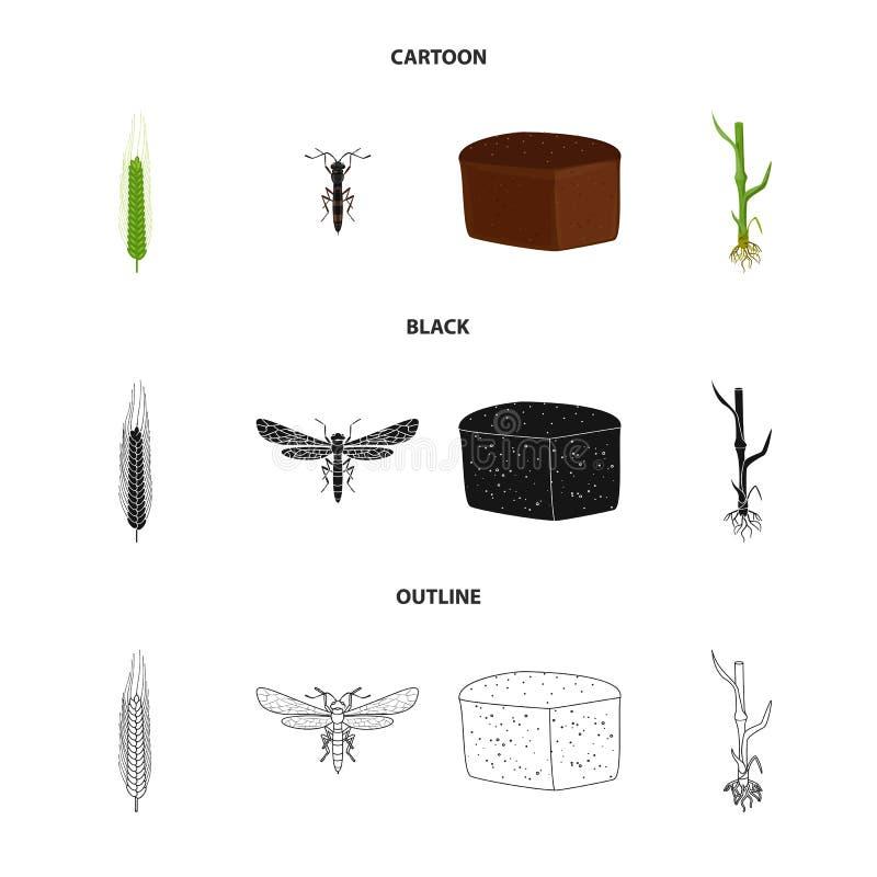 Odosobniony przedmiot rolnictwo i uprawia? ziemi? symbol Kolekcja rolnictwo i ro?lina akcyjny symbol dla sieci ilustracji