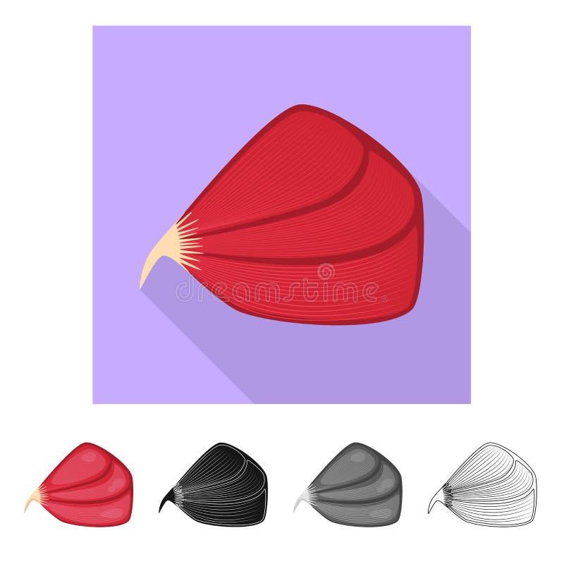 Odosobniony przedmiot włókno i mięśniowy symbol Set włókna i ciała akcyjny symbol dla sieci ilustracja wektor
