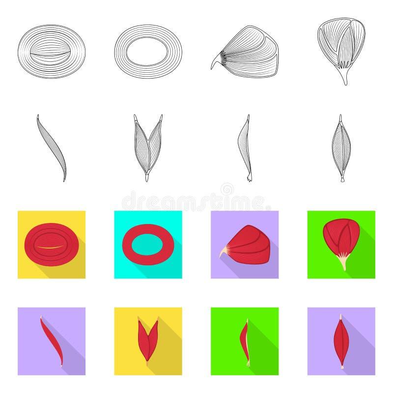 Odosobniony przedmiot włókno i mięśniowy znak Set włókna i ciała akcyjna wektorowa ilustracja ilustracja wektor