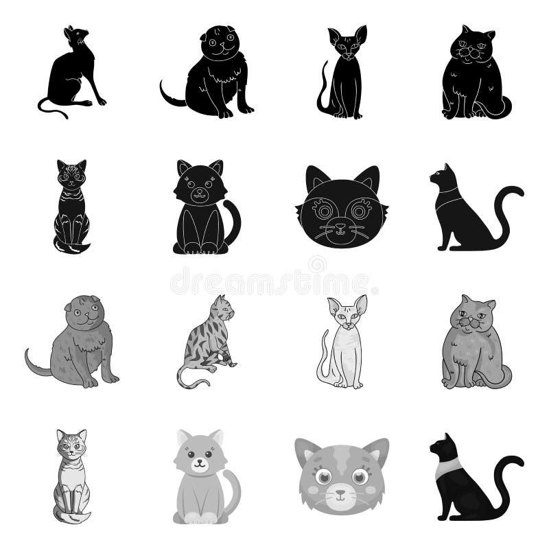 Odosobniony przedmiot zwierz?cia domowego i sphynx ikona Kolekcja zwierz? domowe i zabawy akcyjna wektorowa ilustracja ilustracja wektor