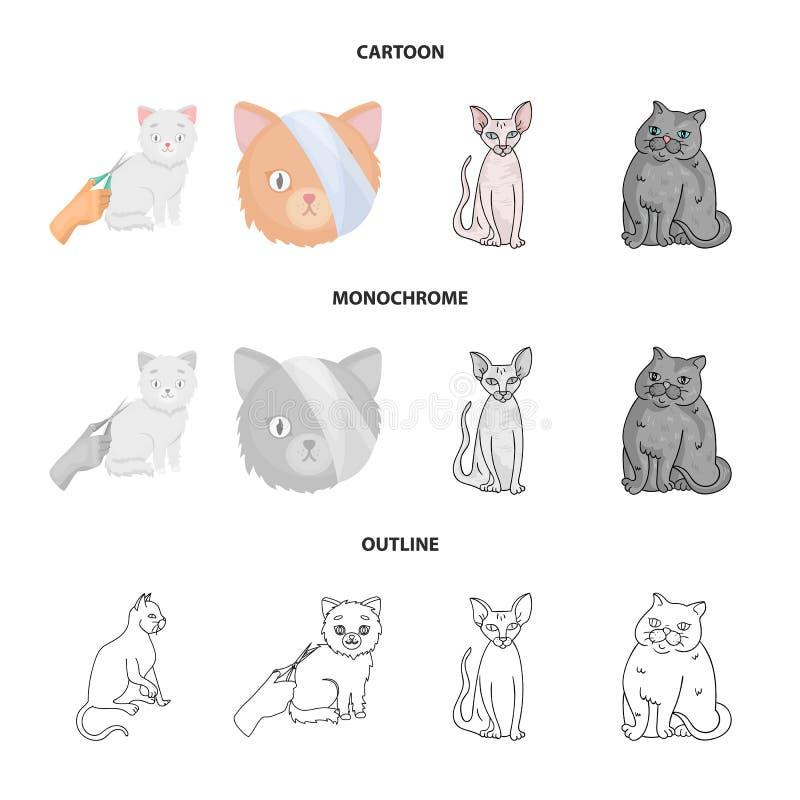 Odosobniony przedmiot zwierz?cia domowego i sphynx logo Kolekcja zwierz? domowe i zabawy wektorowa ikona dla zapasu ilustracja wektor