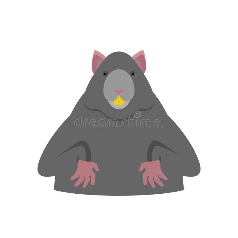 odosobniony szczur duży mysz Ślepuszonka wektoru ilustracja ilustracji