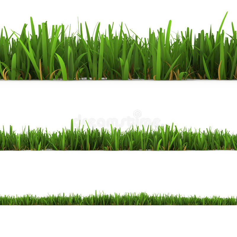 odosobniony trawa biel ilustracji