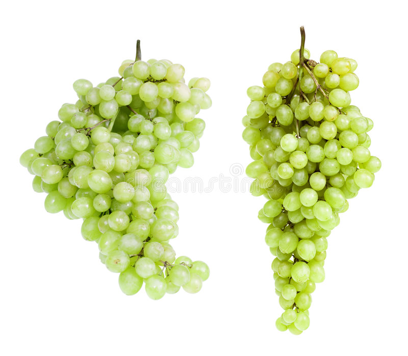 odosobniony winogrono biel zdjęcia stock