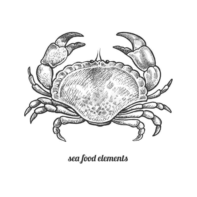 Odosobniony wizerunku krab na białym tle ilustracja wektor