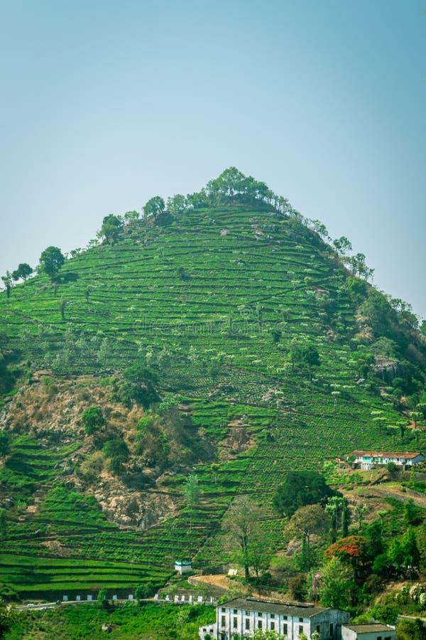 Odosobniony wzgórze zachodni ghat zdjęcia royalty free