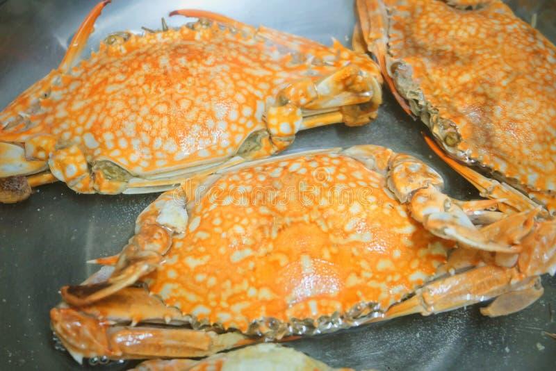 Odparowany Błękitny krab w metalu garnku zdjęcia royalty free