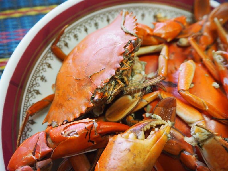 Odparowany krab w talerzu zdjęcie royalty free