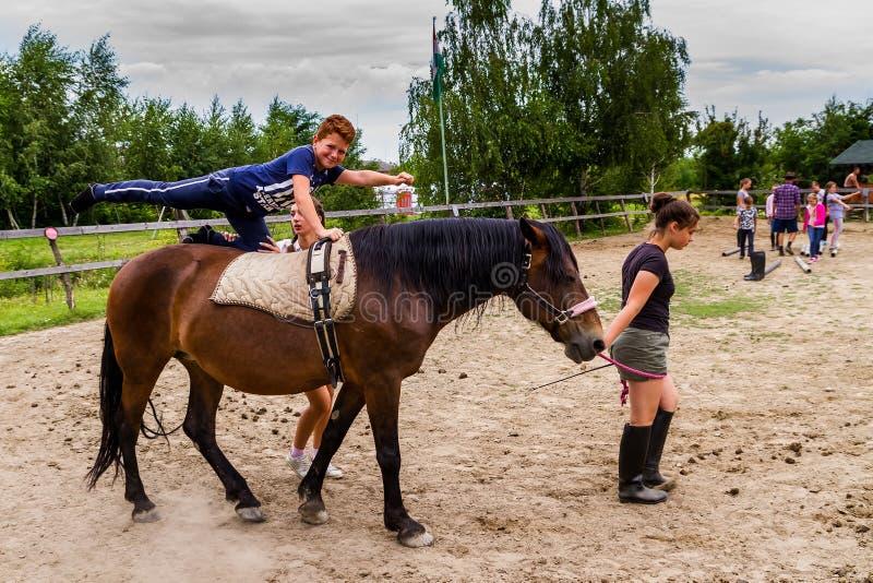 Odpoczynek w lat dzieci ` s equestrian obozie w Ukraina obrazy royalty free