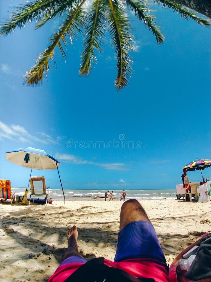 Odpoczywać przy plażą Pod drzewkiem palmowym zdjęcie royalty free