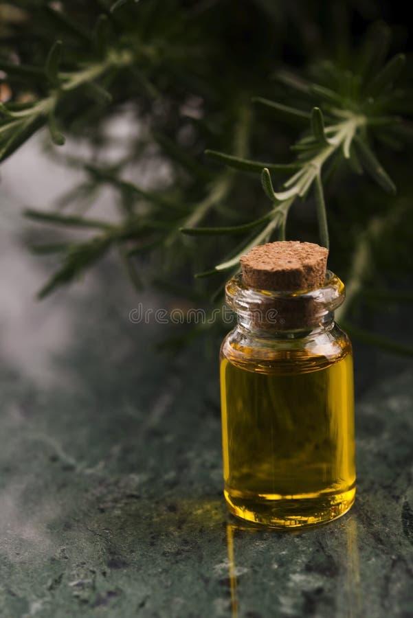 odpowiedni rosemary oleju zdjęcie royalty free