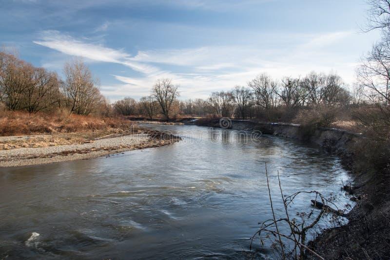 Odra rzeczny meander na Graniczne meandry Odra ochraniający teren na czechu graniczy blisko Bohumin i Chalupki zdjęcia stock