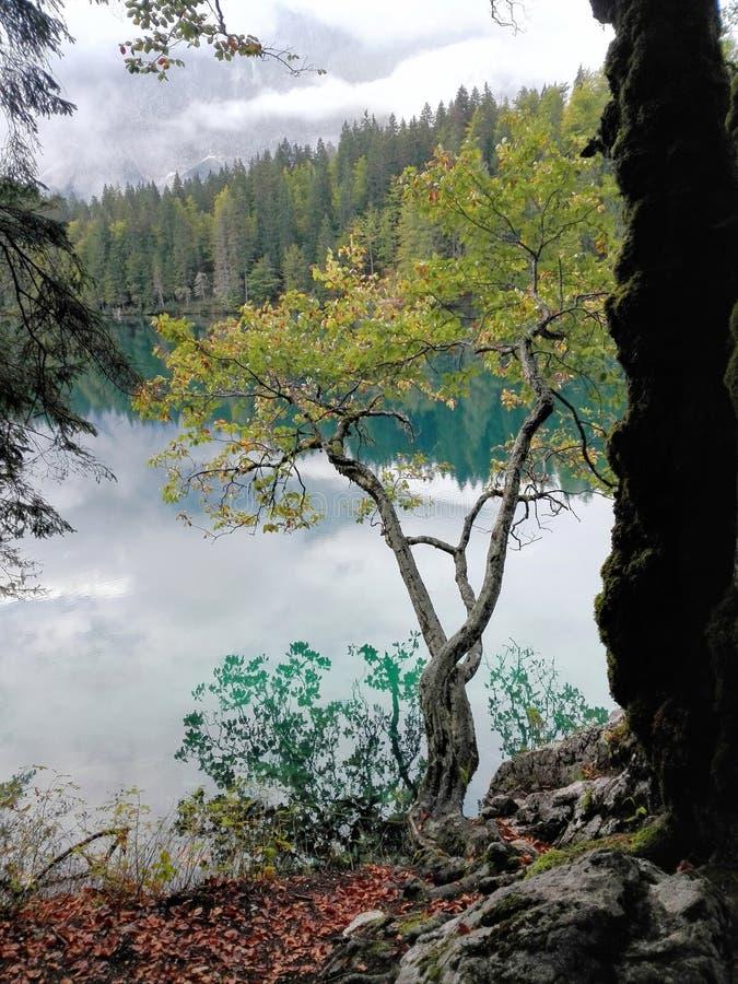 Odruch na halnym jeziorze obrazy royalty free